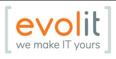 logo evolit